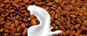almond-milk-1623610_840x350
